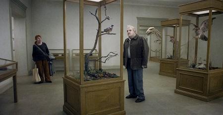 Una paloma reflexiona sobre la existencia desde la rama de un árbol